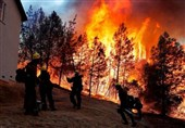 Nineteen Killed in Massive China Forest Fire
