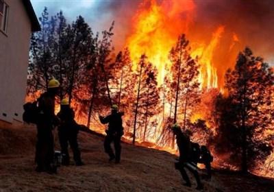 تخریب و تصرف اراضی ملی افزایش یافته است/ تشکیل ۴۶ پرونده آتشسوزی عمدی جنگلها و مراتع