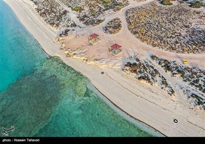 سواحل کیش در روز طبیعت