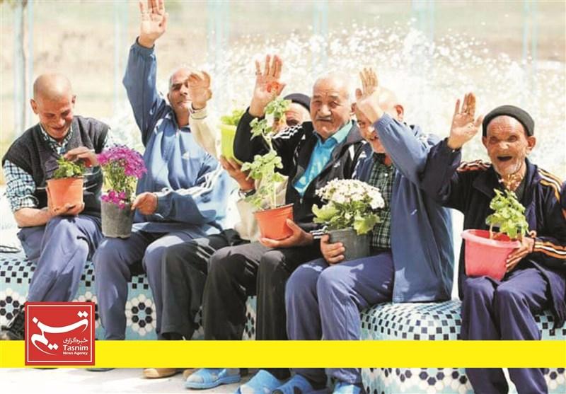 """رشته دانشگاهی """"سالمند شناسی"""" در بوشهر ایجاد شود/ افزایش جمعیت سالمندان استان"""