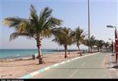 از گوشه و کنار جزایر خلیج فارس| مسئولان برای ترخیص کالا در مناطق آزاد چاره اندیشی کنند