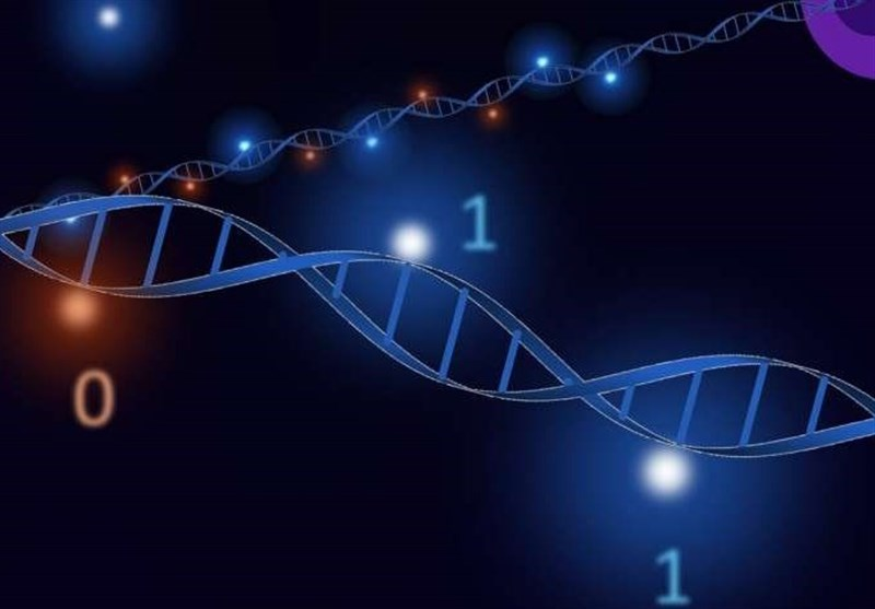 Faster Rewritable Data Storage Made Possible by DNA Lego Bricks