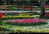 امنیت پارکها در یزد افزایش یابد؛ لزوم جذب نیروی جدید برای تامین امنیت بوستانها