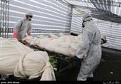 آمار جانباختگان کرونا در تهران به بیش از 130 نفر در روز رسیده است