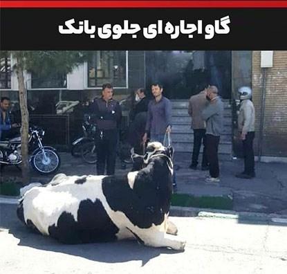بانک ملی ایران , ویروس کرونا , تسهیلات بانکی ,