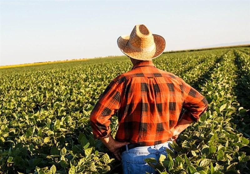 احتمال کاهش واردات کشاورزی چین از آمریکا در صورت افزایش تنشها