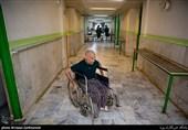 مدیرعامل انجمن دفاع ازحقوق معلولان: آقای حناچی! مثل قالیباف کنار معلولان باشید
