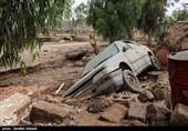 بلایای طبیعی بیش از 5000 میلیارد تومان خسارت به استان کرمان وارد کرد