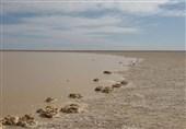 EU, UNDP to Help Revive Iran's Hamoun Wetland: Official