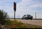 کاهش 3.2 درصدی تردد در جادههای کشور/ترافیک سنگین در آزادراه قزوین-کرج