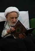 یادنامه آیتالله بهجت| دوران زندگی عبد صالح خدا به روایت تصویر