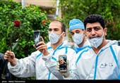 Iranian Nurses Hail Leader's Decision on COVID-19 Vaccine