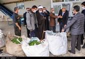 تولید چای ایرانی امسال 10 درصد افزایش مییابد