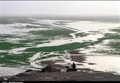 کمک 10 میلیون یورویی اتحادیه اروپا برای احیای تالاب هامون