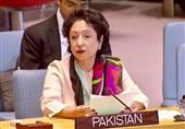 دیپلمات پاکستانی: تاخیر در خروج نیروهای خارجی، روند صلح افغانستان را به خطر میاندازد