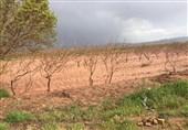 گزارش  وضعیت بحرانی روستاهای اطراف رودخانه آراسنج قزوین بهسرعت سامان مییابد