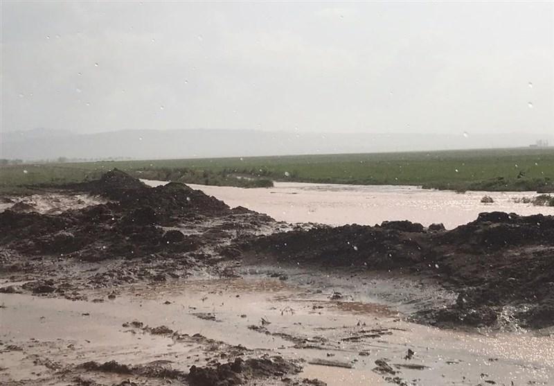 تیر خلاص تگرگ به قلب کشاورزی سمنان؛ دستگاههای اجرایی در آزمون مقابله با سیلاب چه نمرهای میگیرند؟