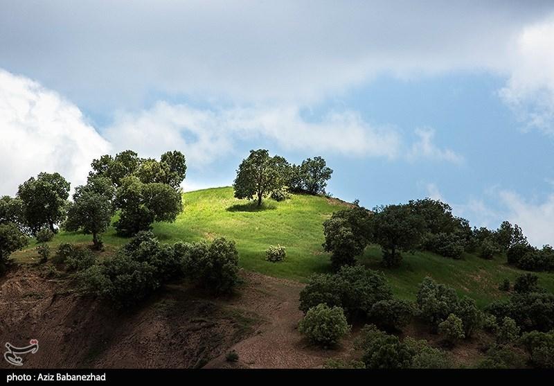 صخره های سر به فلک کشیده مهراب کوه، زنجیروار به هم پیوسته هستند. این کوه، چون صورت فلکی دو پیکر، از دو نیمه مهراب کوچک و مهراب بزرگ شکل گرفته است، که هر کدام پوشیده از درختان کهنسالی چون گردو، سماق، زالزالک، آلو، انگور، انجیر، سیب و گلابی وحشی هستند.
