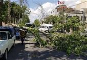 هشدار وزش بادهای شدید در 11 استان