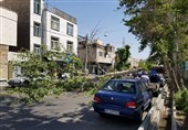 هواشناسی ایران 1400/03/31| پیشبینی وزش باد شدید در برخی استانها