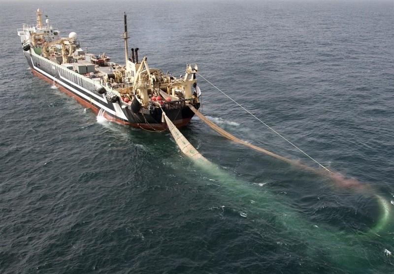 توقیف 4 کشتی صید ترال در بندرعباس و دستگیری 8 تبعه بیگانه