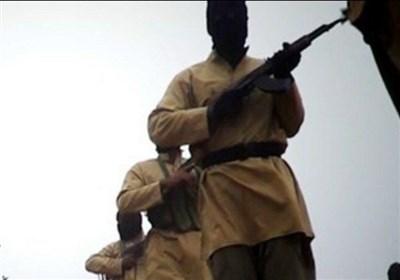 بازگشت بیش از ۱۰۰ تروریست خطرناک داعشی به آلمان