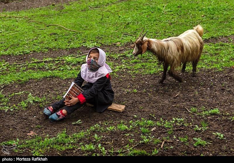 المیرا 9 ساله دانش آموز پایه سوم ابتدایی در حالی که بر روی زمین نشسته به مطالب درسی معلم گوش میدهد. زندگی این کودکان با حیوانات اهلی گره خورده و بیشتر وقت خود را به بازی با این حیوانات میگذرانند. بزها که همیشه عادت داشتند بازی دانش آموزان را در حیاط مدرسه تماشا کنند حالا کنجکاو شده و نزدیک آنها آمده اند
