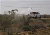 تهران| سمپاشی علیه آفت ملخ در اراضی شهرستان بهارستان آغاز شد