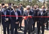کارخانه نوآوری بوشهر با حضور معاونت علمی و فناوری رئیس جمهور افتتاح شد