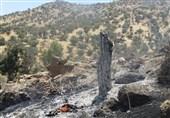 آتش به جان مراتع روستای «بادنگان» در شهرستان «دنا» افتاد