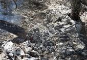گزارش| تیر خلاص شعلههای آتش بر پیکر زاگرس / جنگلهای خامی و خائیز سیاهپوش شدند/ کیست که دلش به حال زاگرس بسوزد؟