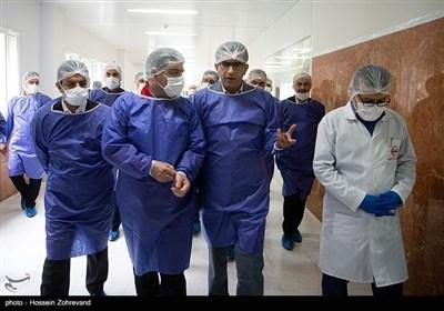 Over 215,000 Coronavirus Patients Recover in Iran