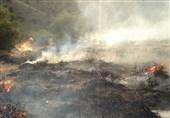 آتش بیرحمانه جنگلهای گچساران را میسوزاند+ فیلم