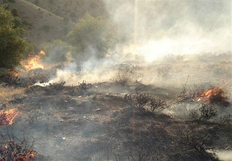 جنگلهای گچساران همچنان میسوزند؛ پرواز 3بالگرد بر فراز آسمان آتشی دوگنبدان