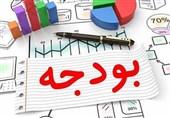 جزئیات آیین نامه بودجه ریزی مبتنی بر عملکرد/ تشکیل کارگروه ویژه در دستگاههای اجرایی