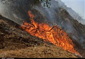 Army Fighting Wildfire in Southwest Iran