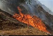 هلال احمر: مسئولیت اطفای حریق جنگل ها با وزارت جهاد کشاورزی است