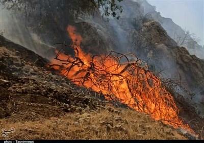 حریق گسترده در هایقر فیروزآباد / مردم به کمک فراخوانده شدند