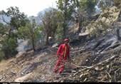 شعلههای آتش خاییز اختلافات در ستاد بحران استانداری کهگیلویه و بویراحمد را شعلهور کرده است