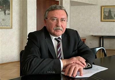 اولیانوف: شورای حکام از اقدامات عجولانه درباره برنامه هستهای ایران خودداری کند