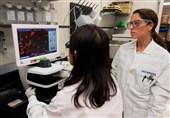تلاش برای آزمایش داروی جلوگیری از لختهشدن خون مبتلایان کرونا