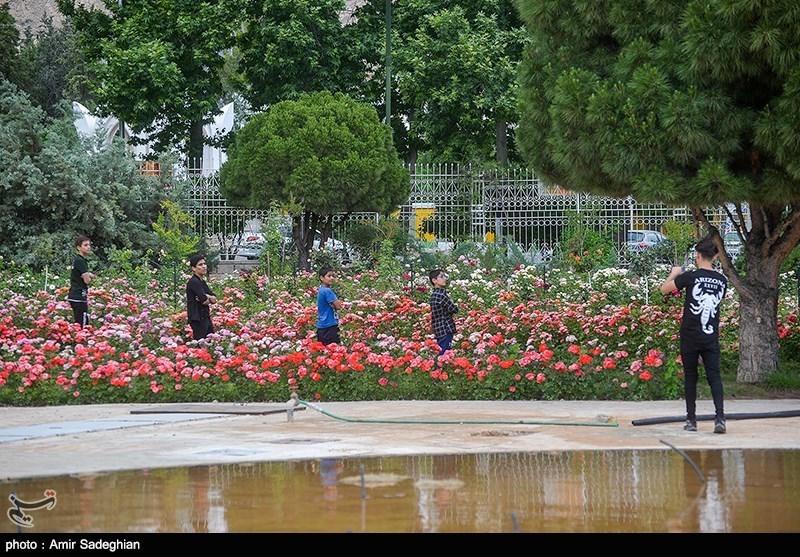 Eram Garden: Treasure Trove of Art in Iran's Shiraz - Tourism news