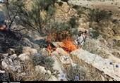حریق در ارتفاعات دره گردویی شهرستان پاسارگاد استان فارس مهار شد