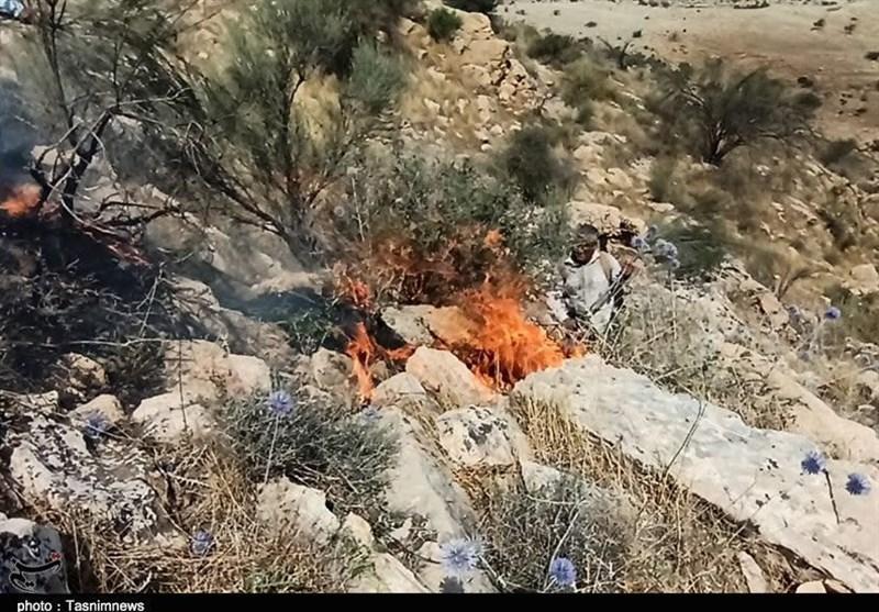 آتشسوزی در ارتفاعات بمو آرام گرفت / حریق در کمتر از 3 ساعت مهار شد