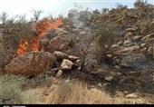 بوشهر|150 میلیارد ریال برای تامین تجهیزات اطفای حریق سازمان جنگلها تصویب شد