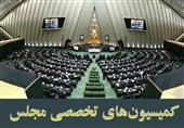لیست قطعی 9 کمیسیون تخصصی مجلس+اسامی