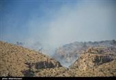 محل آتش سوزی منابع کوهستانی استان بوشهر با پهپاد شناسایی میشود