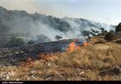 آتش ارتفاعات خائیز کهگیلویه و بویراحمد مهار شد/ استقرار 400 نیروی امدادی در محل/ نیازی به حضور بالگردها نیست