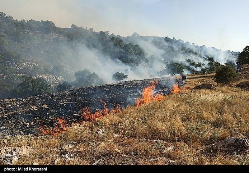 عاملان آتشسوزی کوه خائیز دستگیر شدند / 40 هکتار جنگل و مرتع در آتش سوخت