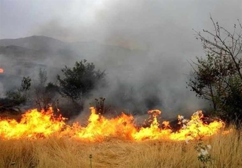آتشسوزی منطقه خائیز بهبهان مهار شد / آتشسوزی جنگلها عمدی بود